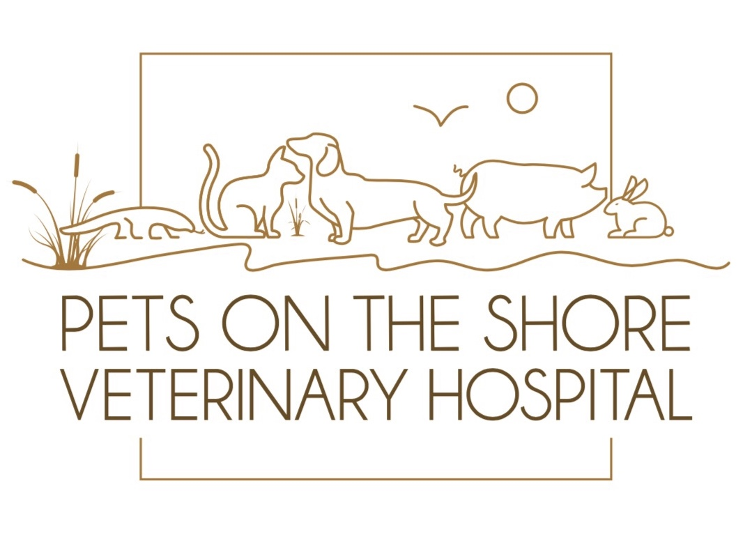 Pets on the shore Logo